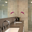 Bathroom Remodeling in Bethesda, Maryland