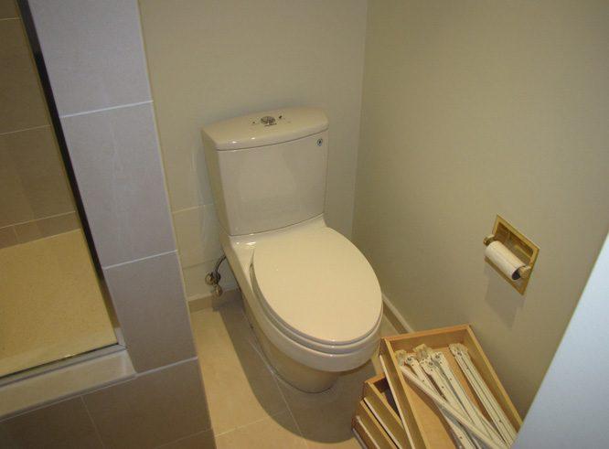 briggs master bathroom1